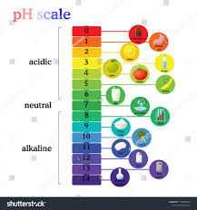 Ph Scale Color Chart Ph Scale Diagram With Corresponding Acidic Or Alkaline