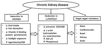 nutrients 08 00291 g001 figure 1 risks of suboptimal vitamin d status in chronic kidney disease