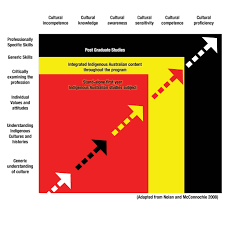 competencies indigenous curriculum infographic showing generic understanding through to professionally specific skills on one axis and cultural incompetence through