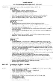Bank Manager Resume Samples Velvet Jobs