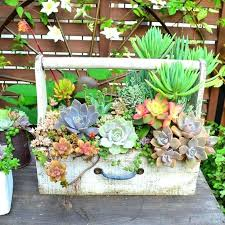 succulent garden designs aesthetically pleasing