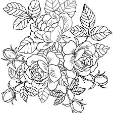 Tuyển tập bộ tranh tô màu bông hoa đơn giản, dễ tô cho bé mẫu giáo - Zicxa  books