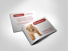 Event Software Brochure Booklet Design - Digital Lion