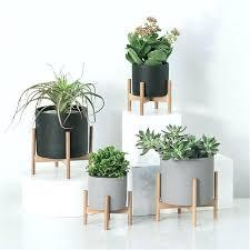 decorative geometric wood rack holder desktop with cement planter garden succulents concrete flower pot plants stand