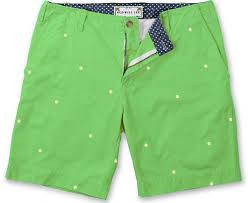 Embroidered Hole Punch Short