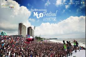 Image result for boryeong mud festival