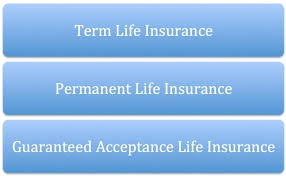 Aarp Term Life Insurance Quotes Aarp Life Insurance Quotes Extraordinary Aarp Term Life Insurance 14
