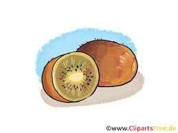 Kiwi Dessin Gratuit Fruits Image T L Charger Fruits Et