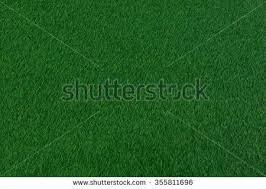 dark green carpet texture. dark green grass carpet. carpet texture