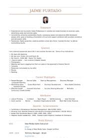 Sales Executive Resume Samples - VisualCV Resume Samples Database New Media Sales Executive Resume Samples