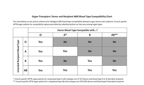 Blood Type Donor Compatibility Chart Free Printable Blood Type Compatibility Charts Donar
