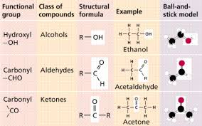 For Each Of The Functional Groups Complete The Chart Chemistry Ii Water And Organic Molecules