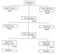 Essay On Some Important Organisation Structure Designs