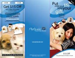 Brochure Samples Brochure Samples Examples Of Brochure Printing