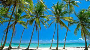 Car Hire Martinique