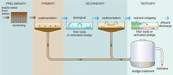 Understanding Water Quality 5 1 Sewage Treatment Processes