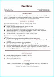 Download Resume Templates Google Docs Templates 1 Resume Examples