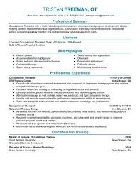 Big Occupational Therapist Example Professional 2 Design Ot