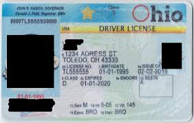 Documents License - Pukka Fake Drivers