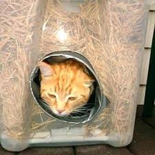 heated cat shelter outdoor heated cat shelter super cozy super easy cat shelter heated cat shelter heated cat