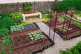 Wonderful Home Vegetable Garden Design Plans Free Office New In ...