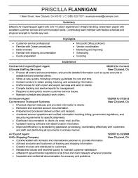 Freight Agent Sample Resume Best Air Import Export Agent Resume Example LiveCareer 24