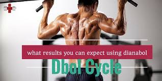 dbol muscle results