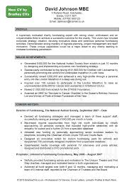 Writing A Good Cv Examples Profesional Resume Template