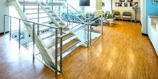 safe vinyl flooring best pet floor cleaner