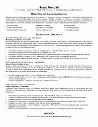 Sales Coordinator Resume Interesting Sales Coordinator Resume