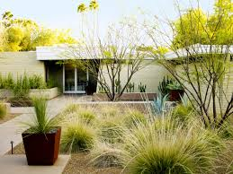 Going lawn-free: Desert front yard facelift