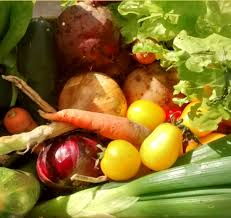 garden food. Milton Food Hub Has Its Main Base In Community Garden, Where Most Of The Growing Activities Are Happening. However, Operates Across Garden O