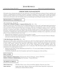 resume commercial credit analyst resume commercial credit analyst resume pictures full size
