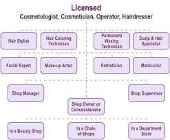 Opportunities Hair Nail Cosmetology Cameo Beauty Academy