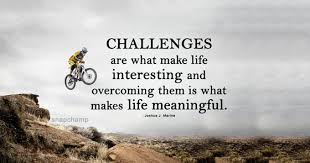 Challenges Make Life Interesting Quotes Extraordinary Life Challenges Quotes