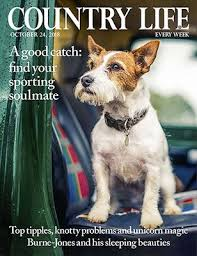Our dog insurance not just simple but simply great value! Country Life Cover October 2018 Country Life Magazine Country Life Dog Magazine