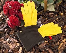 toughtouch gloves gold leaf gardens