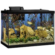Fish Tanks Aquariums Bowls Walmart Com