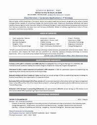 Sap Hana Sample Resume Professional Sap Srm Consultant Resume Free