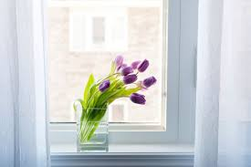 yes your flowers look beautiful in the window