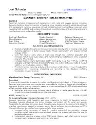 Cv Of A Marketing Professional Fast Online Help