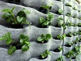 Small Picture Climbing Up 10 Innovative Vertical Garden Ideas Urban Gardens