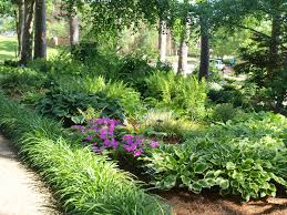 Small Picture Shade Garden Ideas Garden Design Ideas