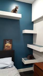 cool cat tree furniture. Cool Cat Tree Trees For Sale Ontario Best Modern Furniture Ideas On Contemporary Home