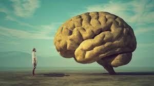 Dos mistérios do cérebro: por que esquecemos as coisas? - Canaltech
