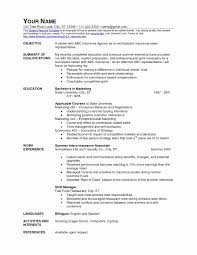 Insurance Representative Resumes Insurance Agent Resume Sample Insurance Agents Resumes Insurance