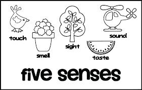 Five Senses Coloring Sheets Five Senses Coloring Page Medium Size Of
