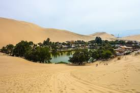 Resultado de imagem para deserto produzindo