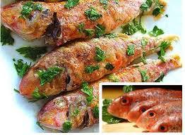 Αποτέλεσμα εικόνας για ψαρια φρεσκα ελλαδα