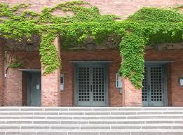 Fenster Und Türen Fenster Türarten Baunetzwissen